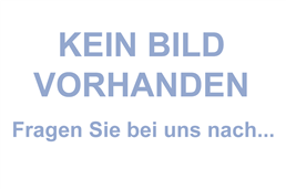 THANA Speed Kugelschreiber: Blauschreibender Aluminiumkugelschreiber in Metallic-Look, mit Metallclip und Zw